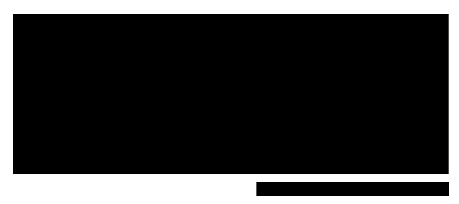 HOMEDOT LOGO WHITE